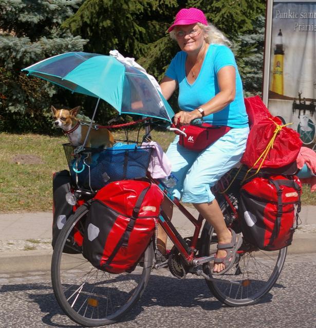 Radfahren mit Hündchen